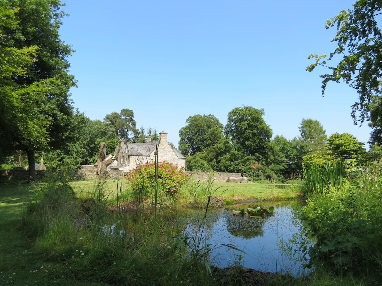 View of the Lodge from the pond in the Garden