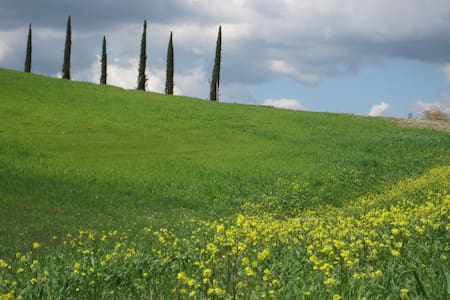 In the heart of beautiful Tuscany! - Radicondoli - Lejlighedskompleks