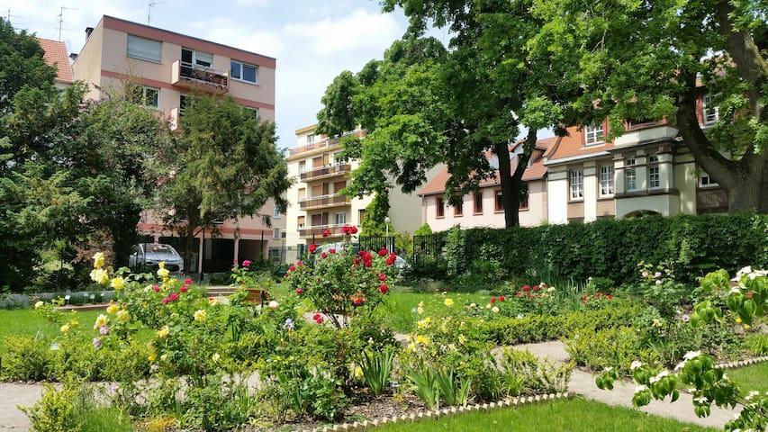 Chambre dans appartement 3P 65m²+balcon fleuri