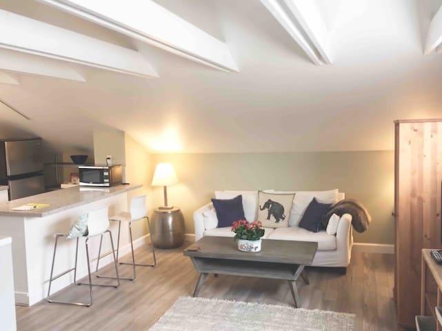 Santa Monica - Super loft-studio