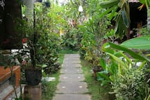 entrance to our homestay