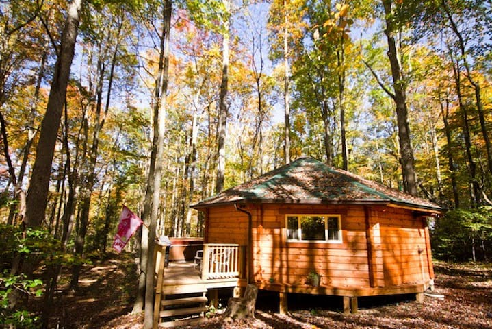 The Love Shack Yurt cabin at Country Road Cabins, Hico, WV