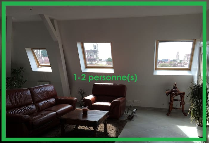 BELLE VUE | 1-2 pers. | Big Appartement | Auxerre