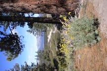 Outside the door, Powerline Trail
