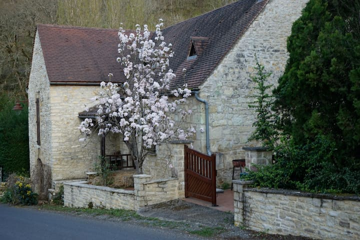house-small medieval village - Lot  - Peyrilles - Hus