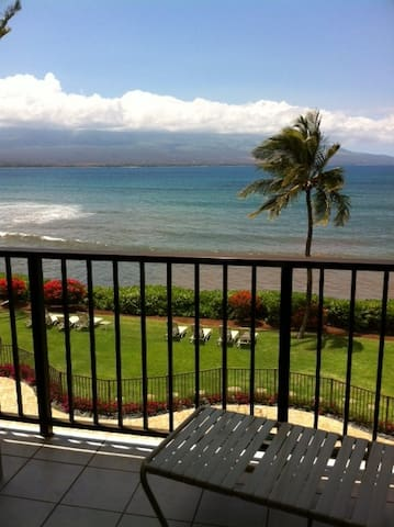 DIRECT OCEANFRONT CONDO-1 bd. 1 bath