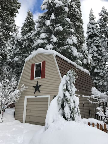 Cozy Private Studio in the Forest - Pollock Pines - Loteng