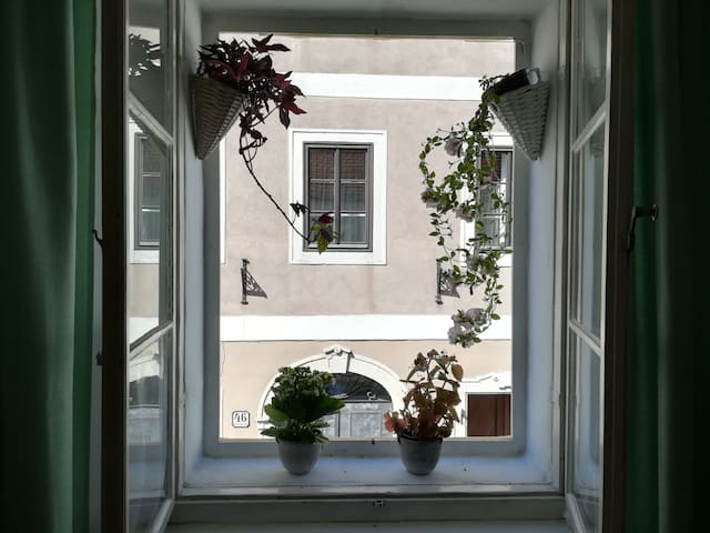 Romantic Apartment, 5min walk from Steyr centre