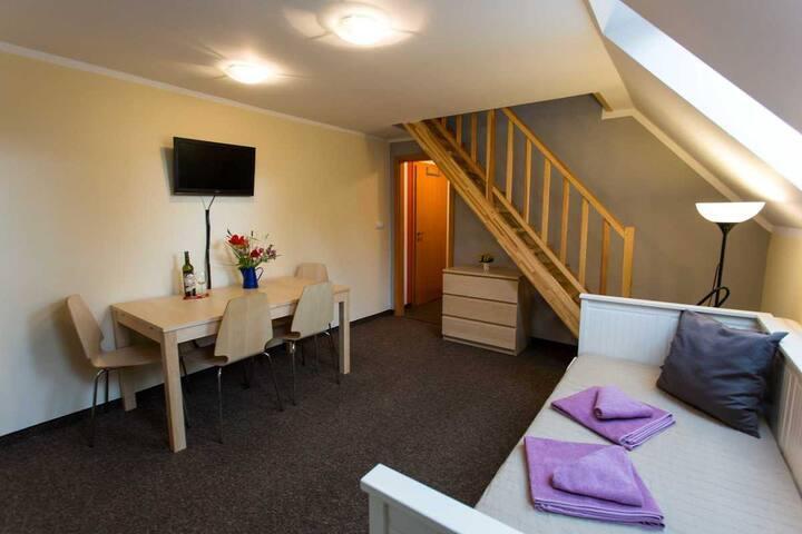 2 Bedroom APT 4 - Apartmany IVA Klinovec