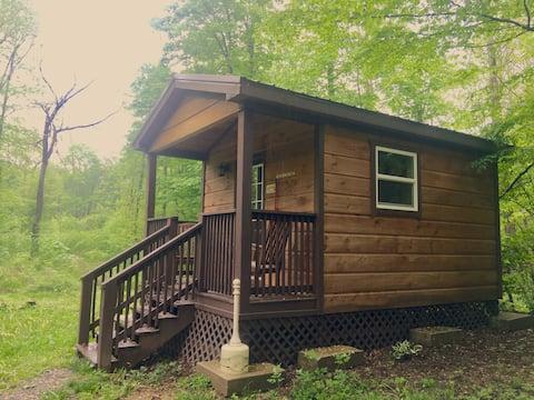 Movie Mini Primitive Cabin