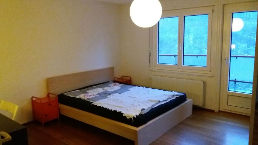 Room for 2 in Villa at Aare River - Berne - Villa