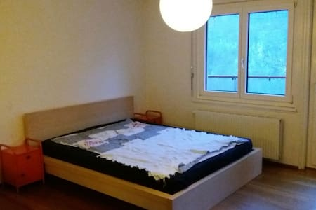 Room for 2 in Villa at Aare River - Berna - Villa