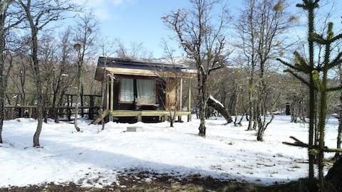 Araucanía Pura - Habitación Araucaría