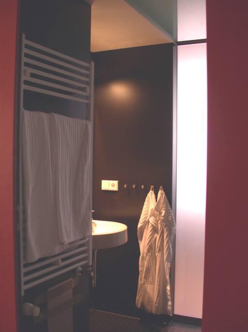 Bad-Box mit WC, Dusche und Waschbecken; ein Fön ist inklusive