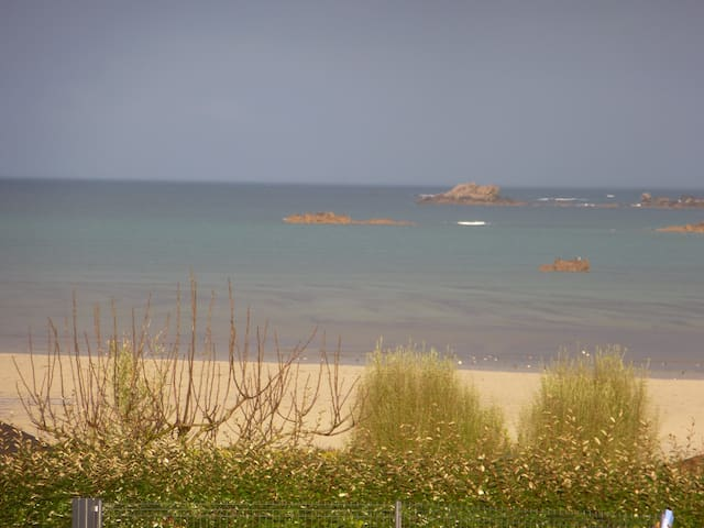Plage,sable fin, coquillages