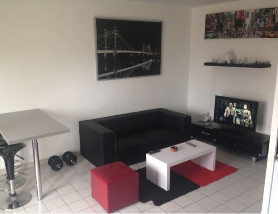 meublé moderne avec canapé et TV