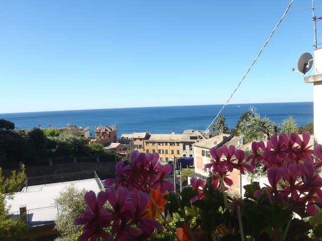 tra fiori e mare scopri la Riviera Ligure e Genova - Genoa Nervi - วิลล่า