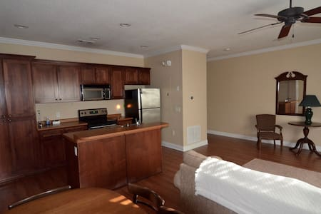 One Bedroom Apartment in Downtown Statesboro