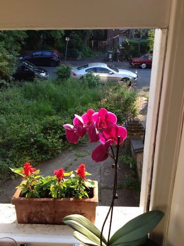 Cozy home in Hither Green - London - Flat