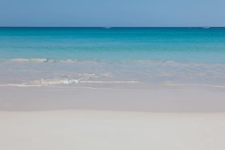 Pristine pink sand beach