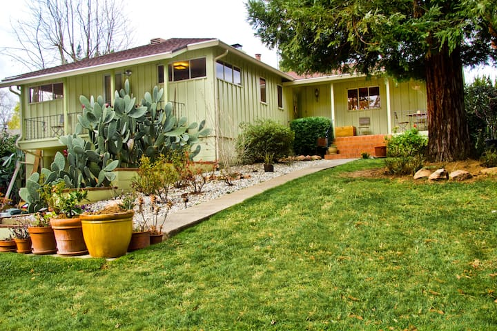 RetroModernClassic with Pool! - Fair Oaks - Dom