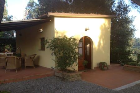Appartamento con vista sulle vigne - Gasparrino - Hus