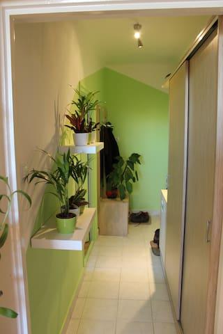 Private room near Gellért Hill - Budapest - Apartment