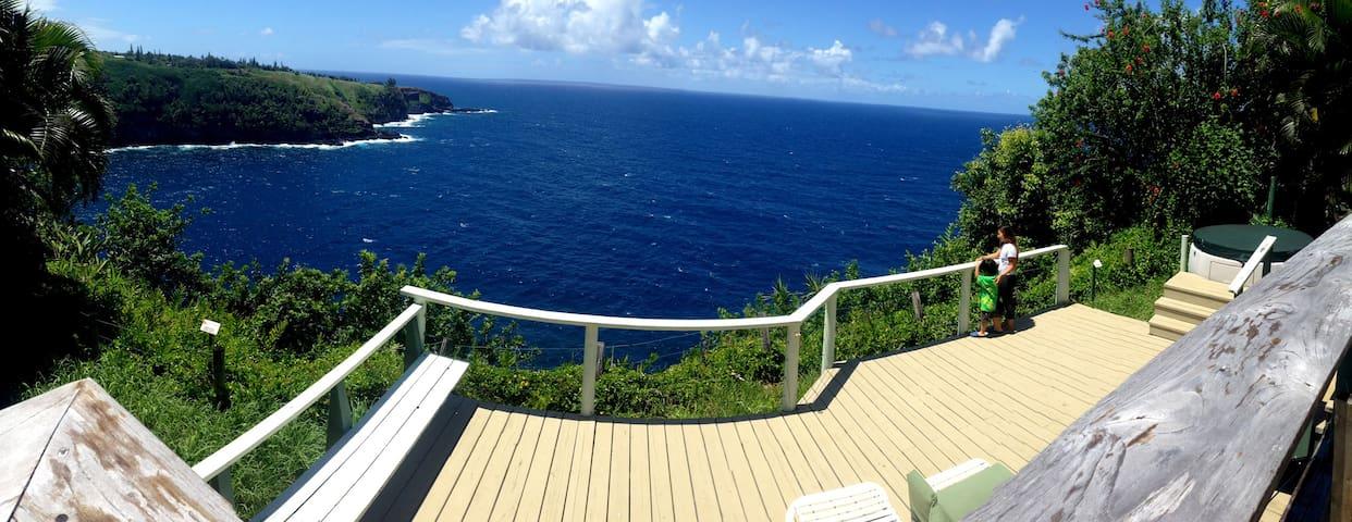 Oceanfront 2 bedroom home long term - Maui - Casa