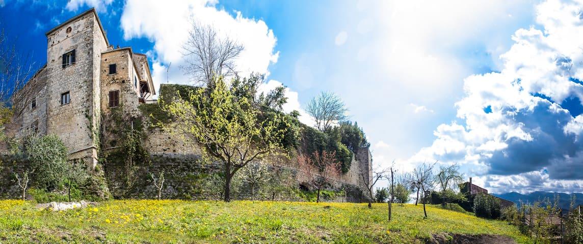frutteto della villa sotto le mura del castello