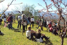 ospiti sul fruttetto della villa