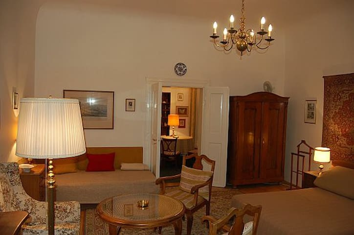 Antique Apartment in baroque House near KAMPA park
