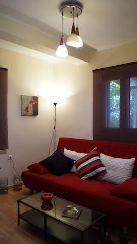 Verginis Apartments (1) - Τσουκαλάδες - Lägenhet