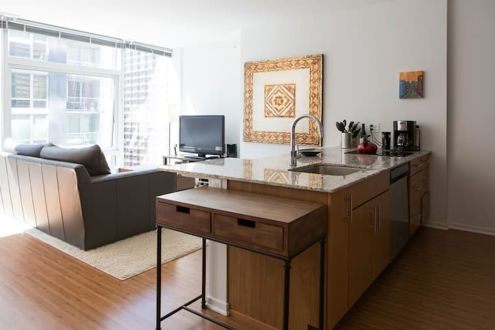 Michigan Avenue Luxury Condo!