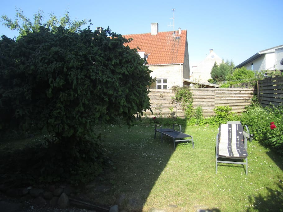 access to garden with barbacue
