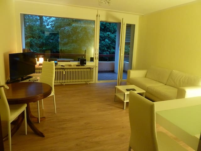 Newly nice renovated appartment  - Küssaberg - Apartemen
