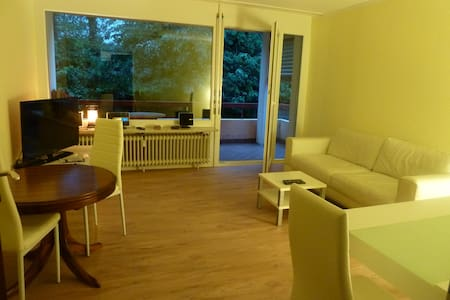 Newly nice renovated appartment  - Küssaberg