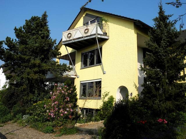 Ferienwohnung Maintalblick - Eisenheim - House