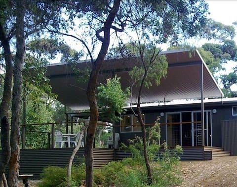"Hamelin Bay ""LinRiebie"" - Karri Forest Experience"