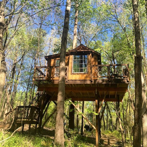 Treehouses In North Carolina - Group guys build epic treehouse gaming