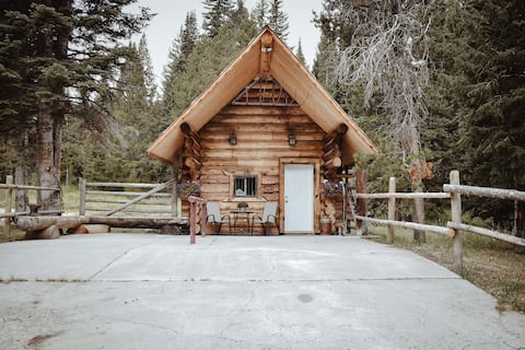 One of a kind cabin with unique amenities!