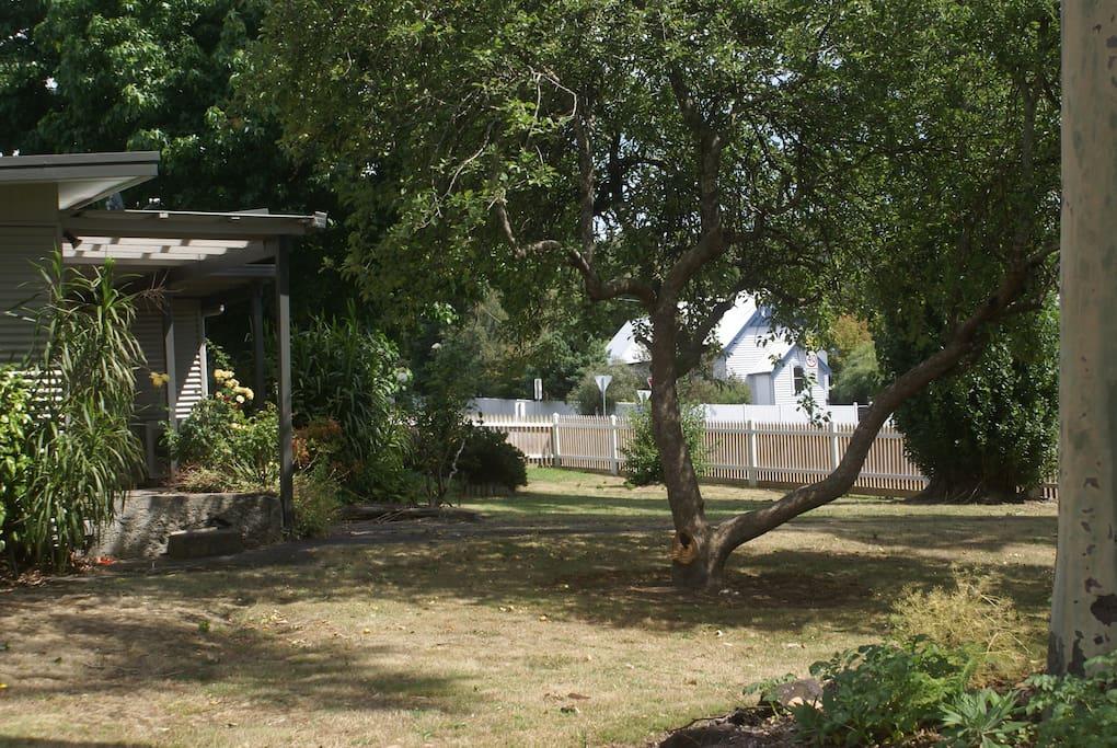 Shady garden to enjoy.