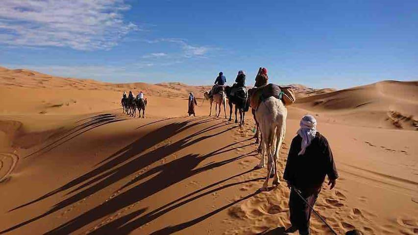 erg chebbi desert overnight camel trip