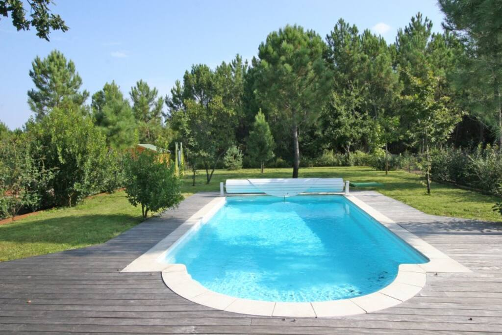 View of pool and woods beyond