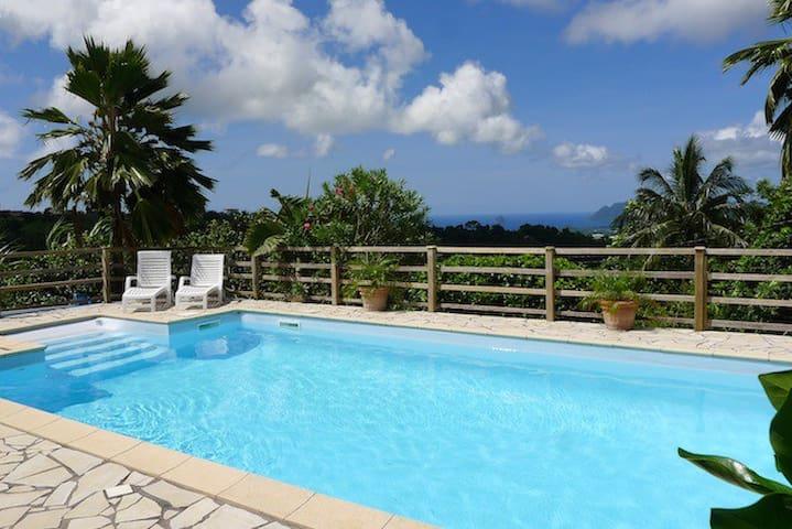 Ravissant bungalow f2 style cr ole avec piscine for Bungalow avec piscine martinique