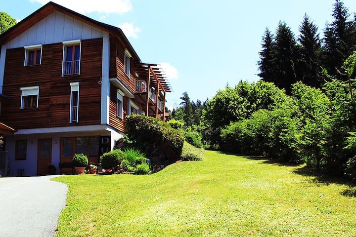 Apartments am See und Skiregion  - Presseggersee