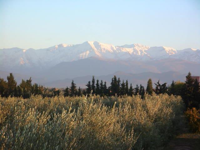 Maison-Jardin face aux montagnes  - Douar Sidi Bouzguia - Bed & Breakfast