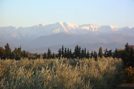 Maison-Jardin face aux montagnes  - Douar Sidi Bouzguia