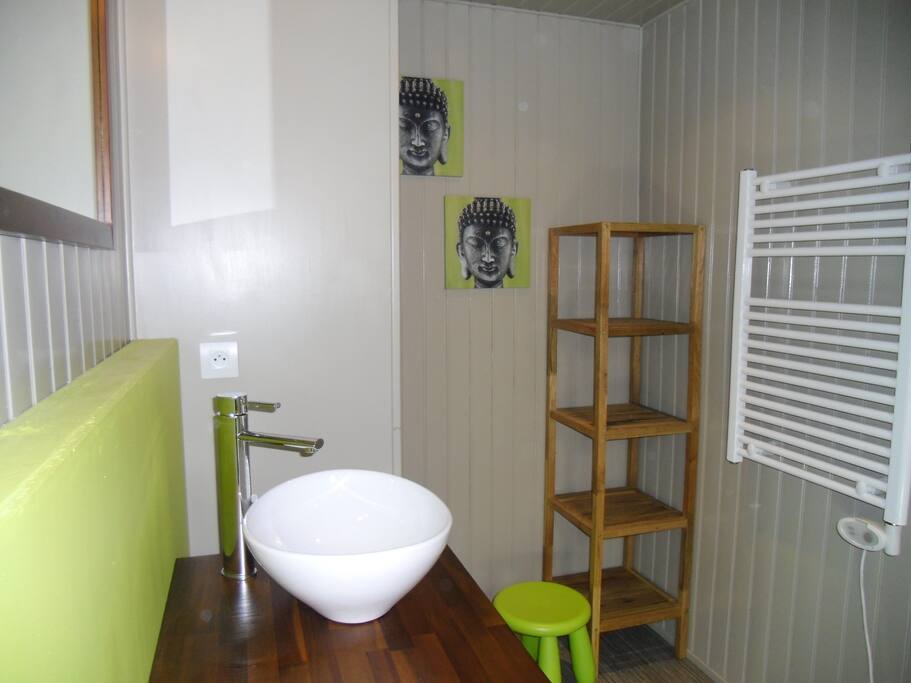 La salle d'eau. Vasque design