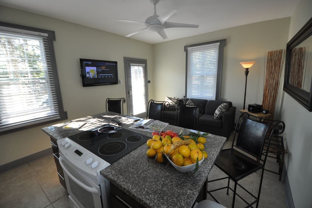 42 inch tv with internet keyboard, queen sofa sleeper, full kitchen, 9' ceilings