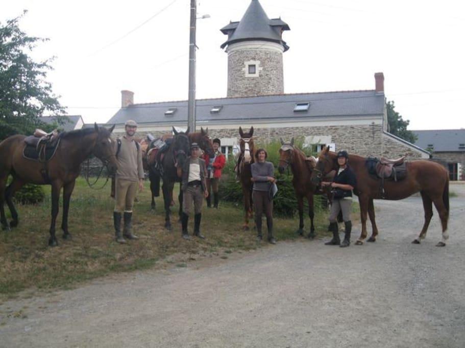 Groupe de randonneurs équestres